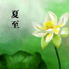 中国传统二十四节气之夏至谚语 1,219 免费 二十四节气 夏至 小清新