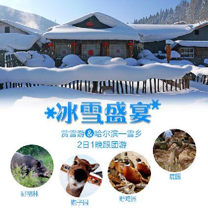 冰雪盛宴-微信广告