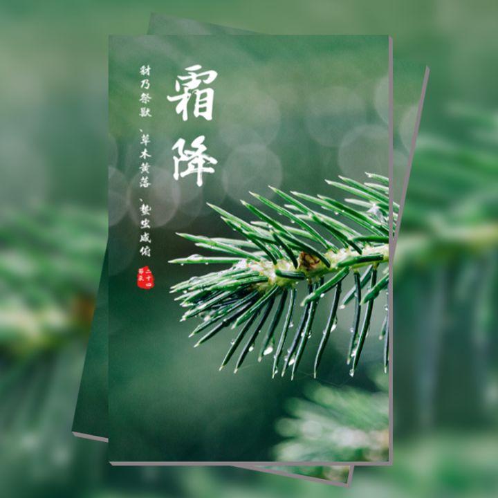 雨水 24节气 中国传统节气
