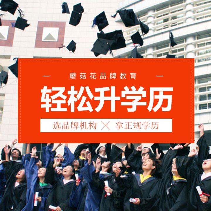 学历教育学历提升宣传——广告模板