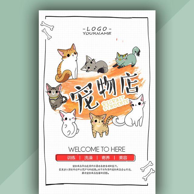 宠物店宣传介绍宠物店开业活动促销宠物美容训练