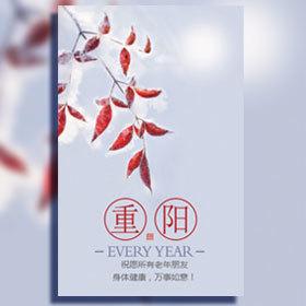 重阳节自媒体产品推广