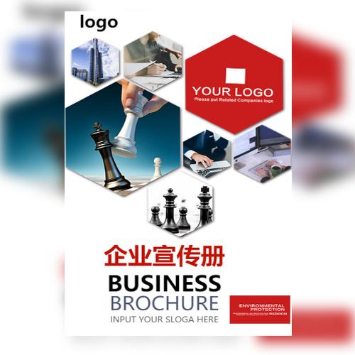 公司简介企业宣传产品介绍品牌推广产品画册产品宣传