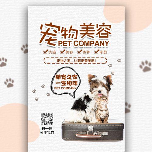萌宠宠物店宠物美容宠物护理