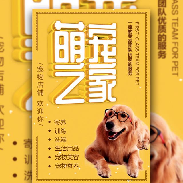 黄色立体字宠物之家促销时尚宣传