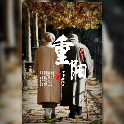 温馨重阳节祝福相册关爱老人企业祝福