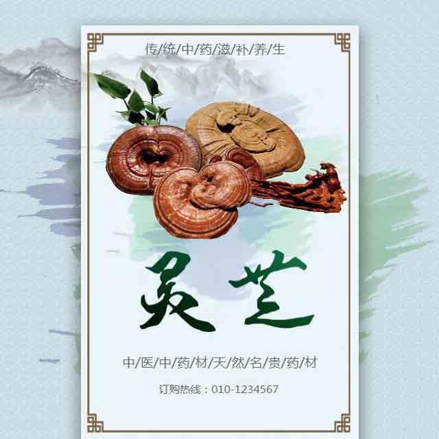 中药材天然灵芝产品推广宣传模板