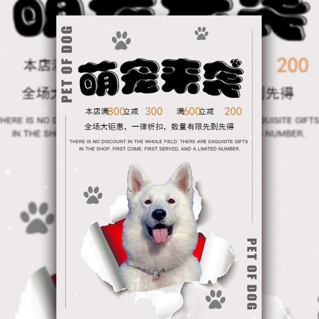 创意撕纸宠物狗促销时尚宣传