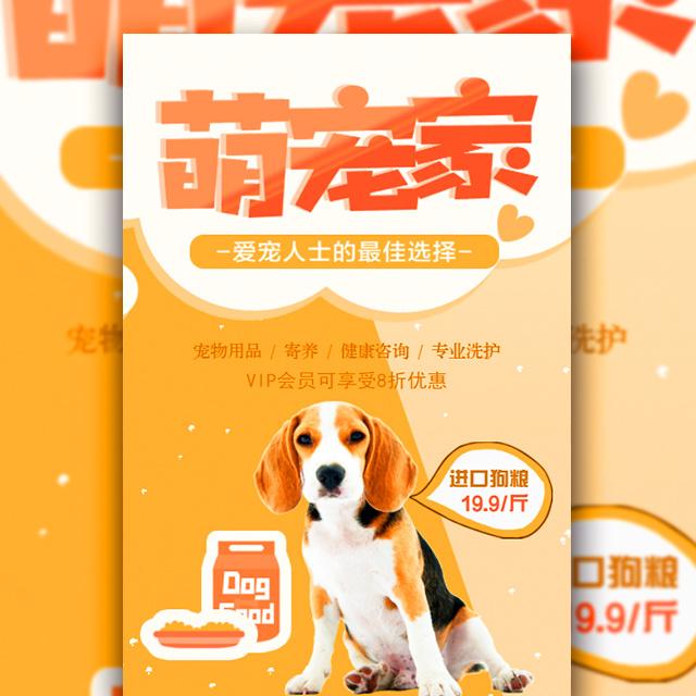 宠物用品促销清新时尚宣传