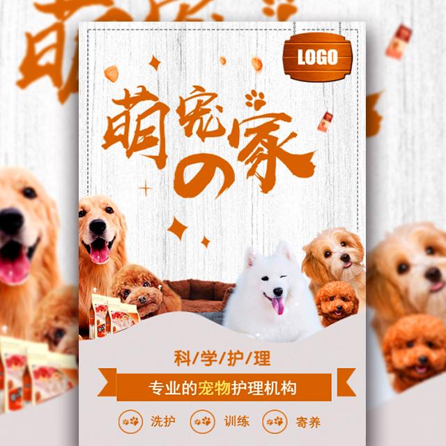 宠物店铺促销宠物开业时尚宣传