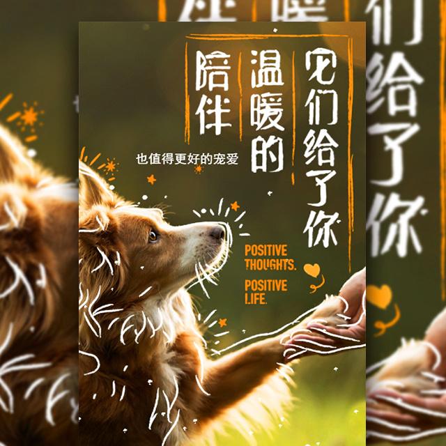 手绘风温馨宠物用品促销时尚宣传