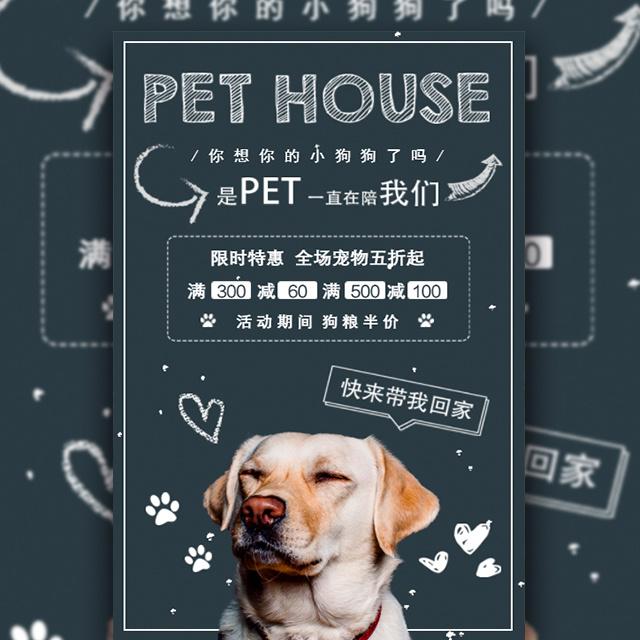 粉笔风宠物狗促销时尚宣传