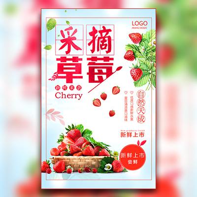 采摘草莓现摘草莓水果采摘节有机农业农家乐水果