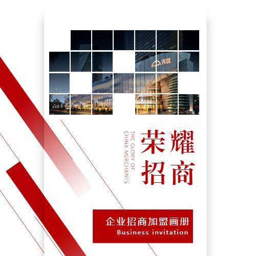 高端简约大气品牌项目招商加盟手册企业宣传公司介绍