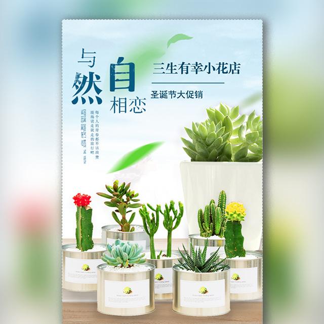 盆栽花卉装饰品