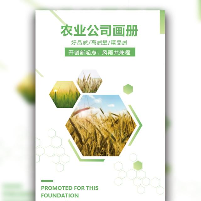 农业农产品企业文化宣传画册商务简约风