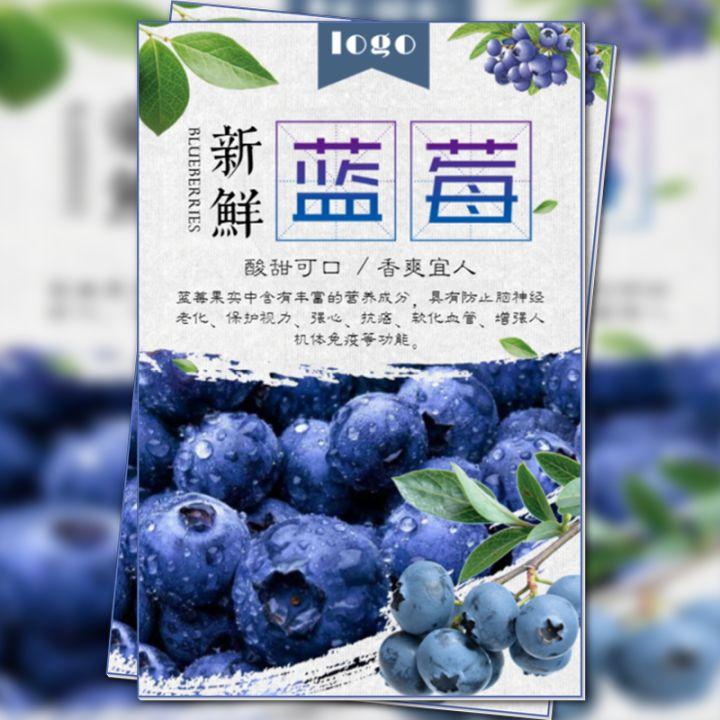 蓝莓水果促销果园采摘活动果园介绍