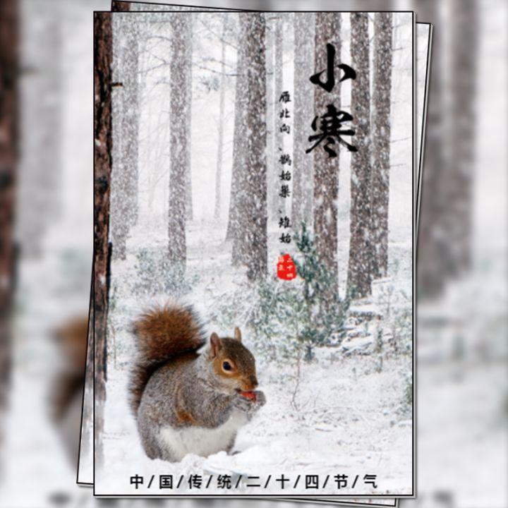 小寒24节气中国传统文化科普宣传