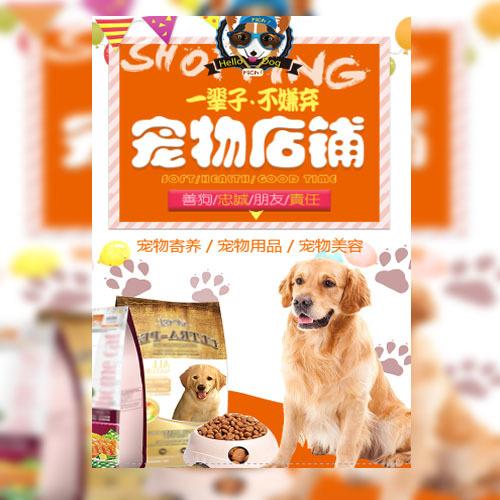 宠物店开业促销医院宠物宠物店铺宠物寄养宠物用品