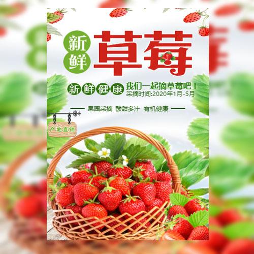 草莓采摘清明踏青生态园果园采摘水果采摘节亲子采摘